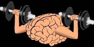 brain-1295128_1280-1